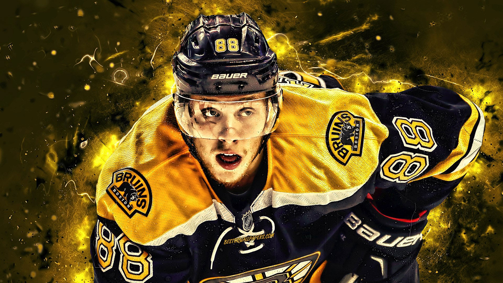 David Pastrnak Wallpaper