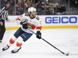 What team will Mike Hoffman sign with?